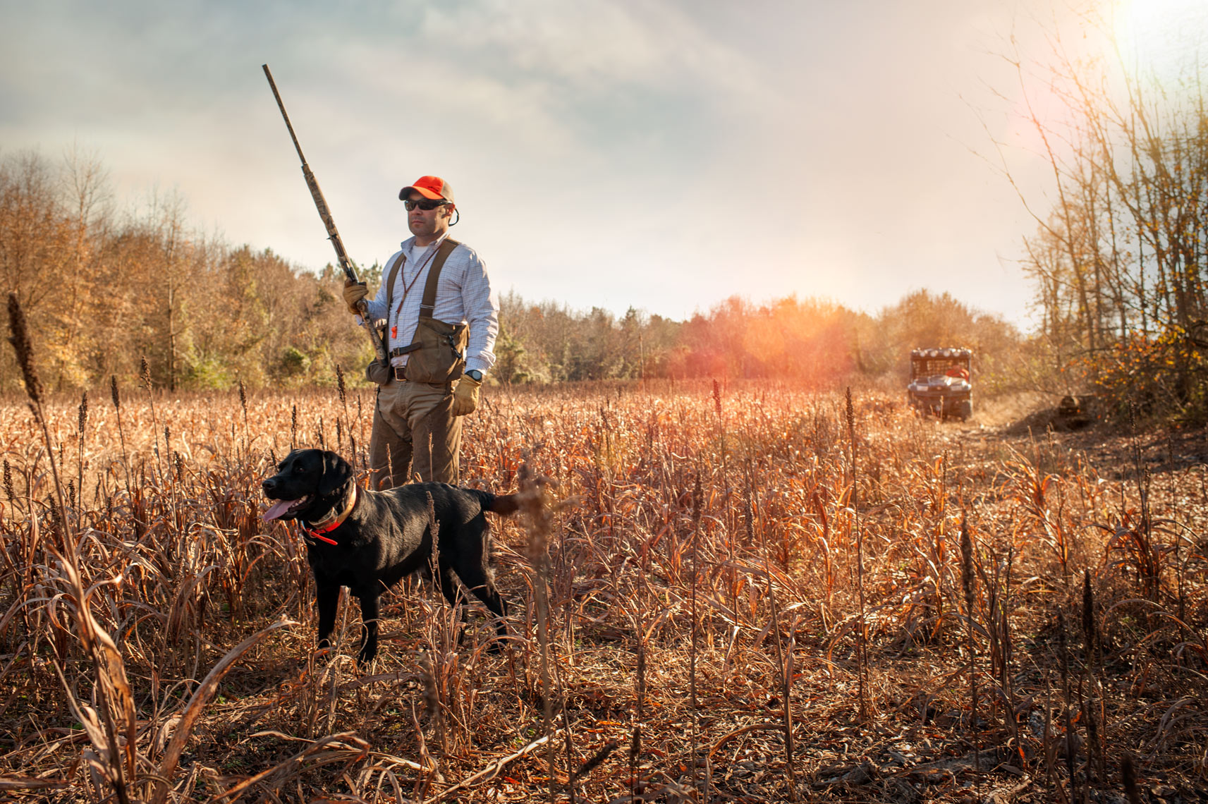 ©Robb Scharetg - Dean, Bena and Squire, bird hunting.